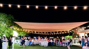 Winery Wedding Reception
