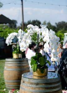 Wine Barrels with Flowers